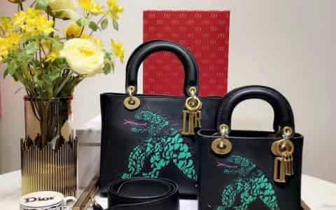 迪奥Lady Dior 恐龙抽象印花图案原色小牛皮柔软手提包 17/24CM