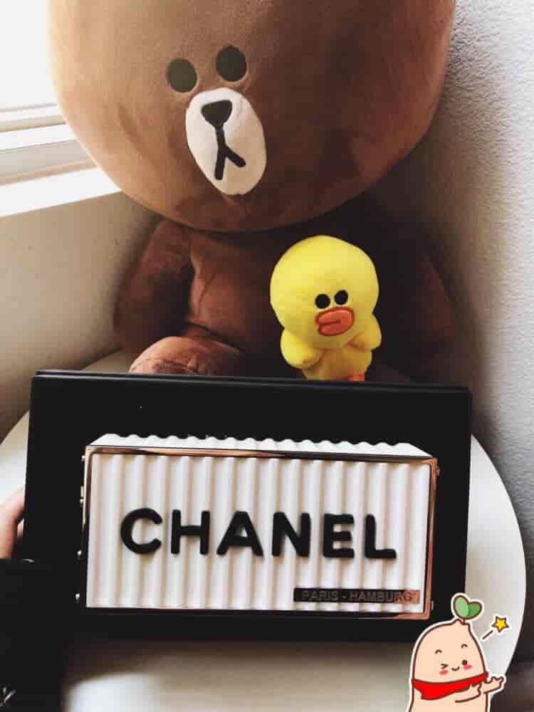 Chanel/香奈儿 2019年早春新款限量版货柜集装箱包包