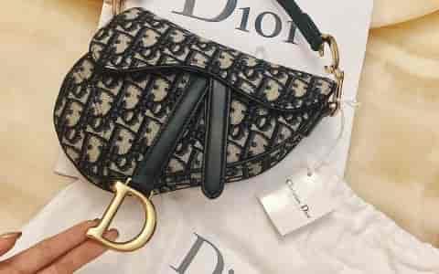 Dior新款马鞍包 时尚回潮
