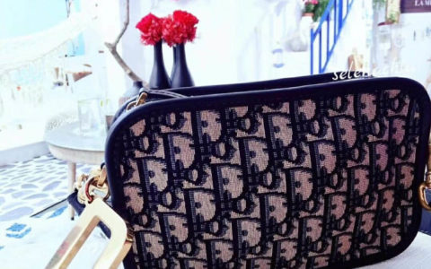 Chanel 2018春夏pre collection复古双面 链条手柄 菱格链条包