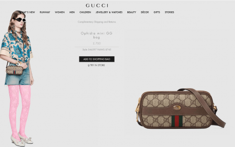 Gucci/古驰 Ophidia mini GG bag 546597