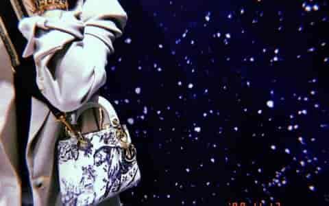 Dior/迪奥 刺绣印花老虎Toile de Jouy度假风系列Lady戴妃包