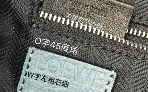 Dior/迪奥 18ss新款 彩色宝石肩带Addict限量系列单肩包