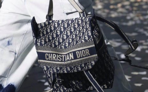 Dior/迪奥 老花Oblique刺绣帆布背包双肩包
