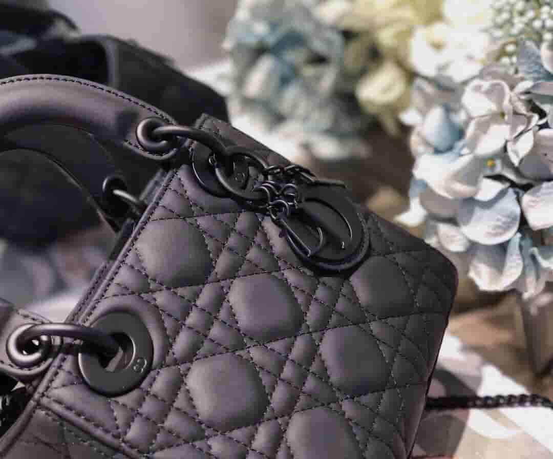 Dior/迪奥 19新款Ultra-matte SO BLACK磨砂系列戴妃包