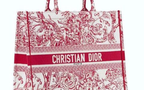 Dior/迪奥 Book Tote中国限定彩色提花帆布购物袋