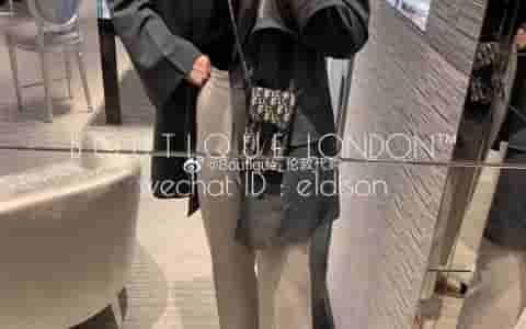 Dior/迪奥 Saddle pouch chnvas马鞍系列Oblique手机包