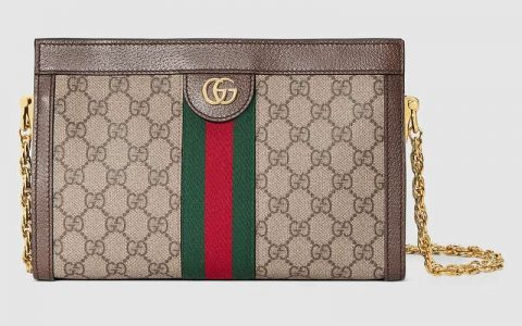 Gucci/古驰 Ophidia链条单肩包 503877 K05NG 8745