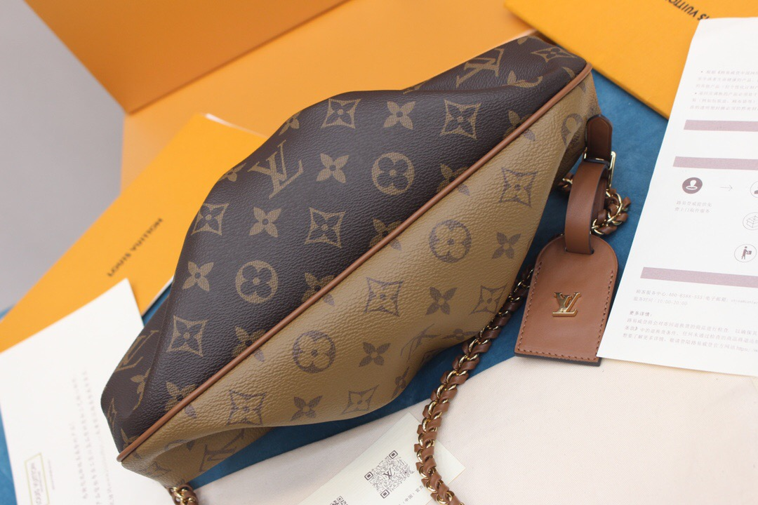 Louis Vuitton LV Boursicot 链条拼色斜挎云朵包 M45229