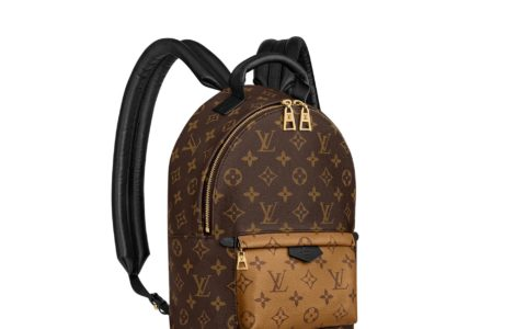 LV M44870 Palm Springs 小号双肩包