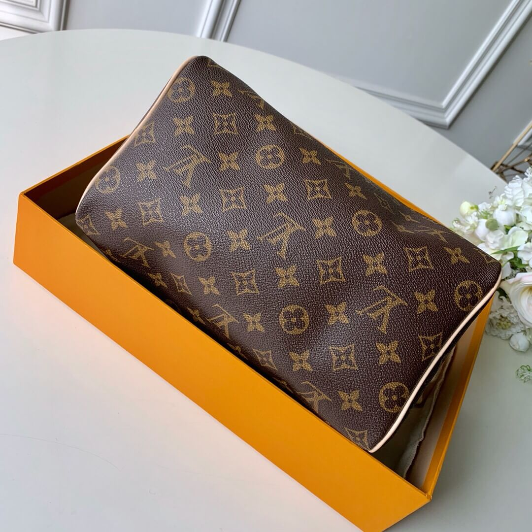 LV Speedy 25 Monogram in Brown - Handbags M41109