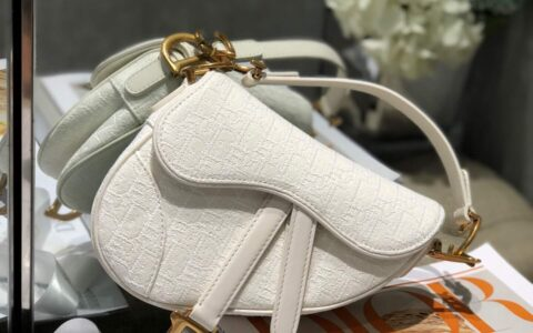Dior/迪奥 白色 Oblique 印花迷你马鞍包 M0447CTZQ_M879