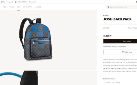 Louis Vuitton LV Josh Backpack 双肩包 N40402