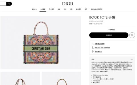 Dior 多色In Lights刺绣Book Tote购物袋 M1286ZRLE_M886