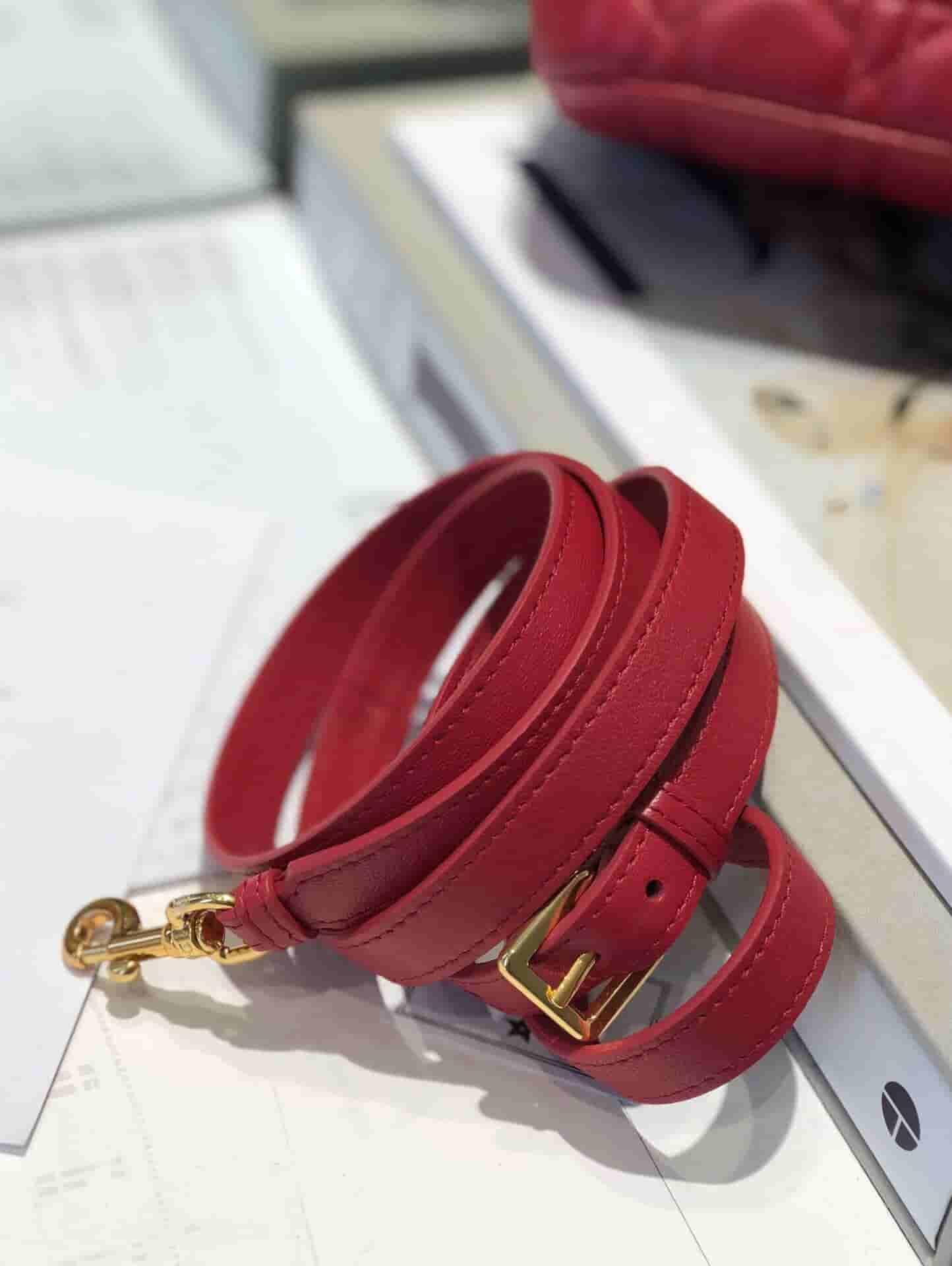 Dior Travel红色羊皮藤格纹单肩手提化妆包 S5488UNTR_M53R