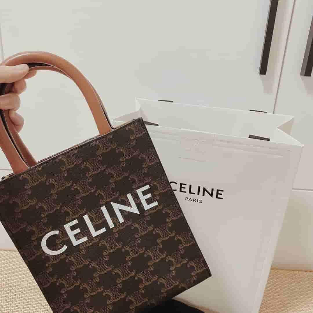 Celine CABAS 迷你标志印花竖款手提包 194372BZK.04LU